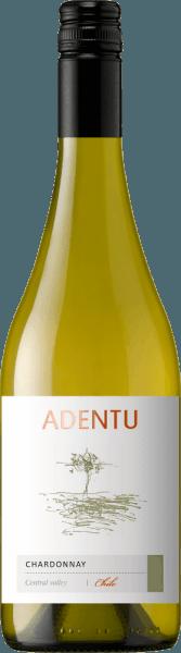 Adentu Chardonnay 2020 - Viña Siegel