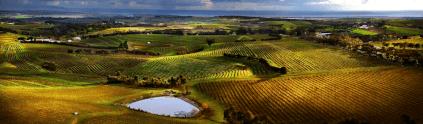 Luftbild des Rosemount-Anwesens