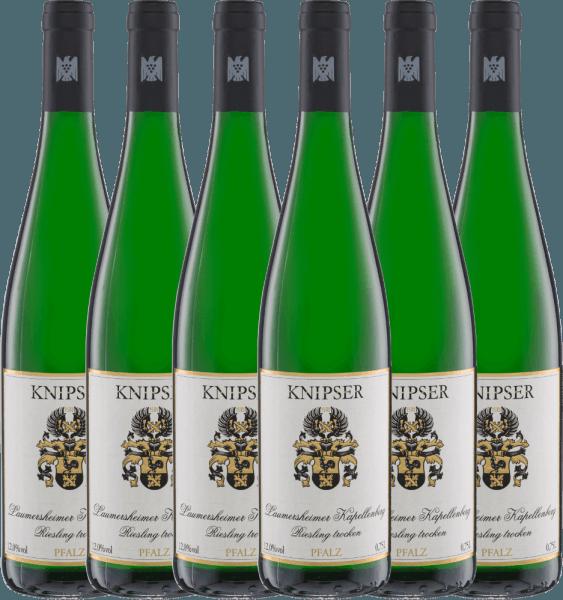 6er Vorteils-Weinpaket - Laumersheimer Kapellenberg Riesling 2020 - Knipser
