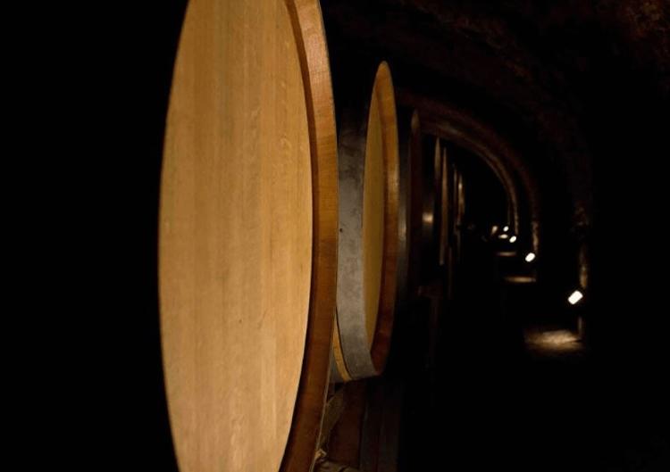 Im Weinkeller der Tenute Nardi