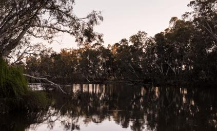 Der Goulburn River