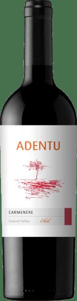 Adentu Carménère 2019 - Viña Siegel