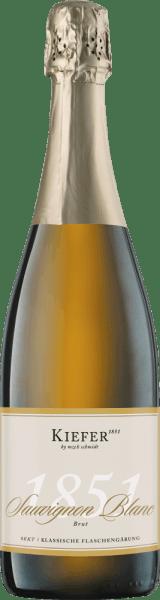 1851 Sauvignon Blanc Sekt brut - Weingut Kiefer