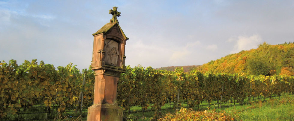 Weingut Lergenmüller bei Hainfeld