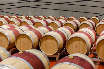 Hier reifen die Luce della Vite Weine über Monate.
