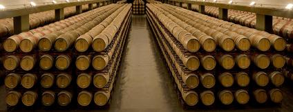 In unzähligen Holzfässer reifen die Rioja Weine in der Bodegas Montecillo