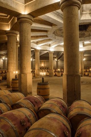 Im Weinkeller von Chateau Lafite Rothschild
