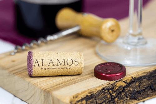 Das argentinische Weingut Alamos