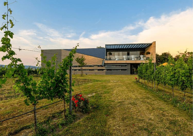 Das Esterházy Weingut in Trausdorf