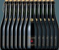 12er Vorteilspaket - Fragolino Rosso Frizzante - Bottega