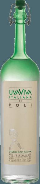 Uva Viva Italiana di Poli in GP- Jacopo Poli