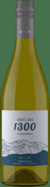 Chardonnay 1300 Tupungato Mendoza 2019 - Andeluna Cellars